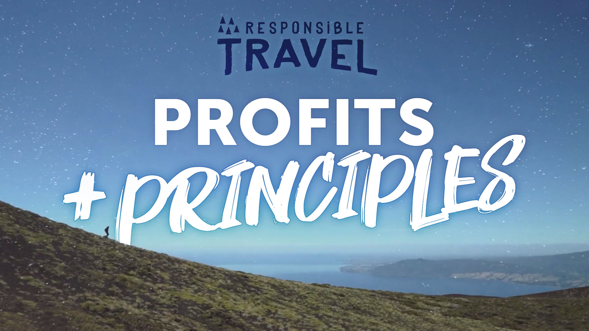 Poster for Profits and Principles