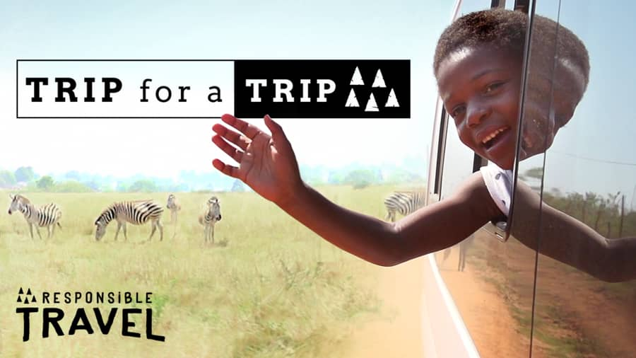 Poster for Trip For A Trip, Swaziland